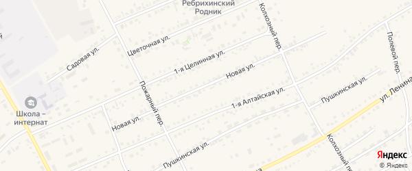 Новая улица на карте села Ребрихи с номерами домов