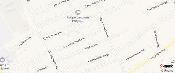 1-я Целинная улица на карте села Ребрихи с номерами домов