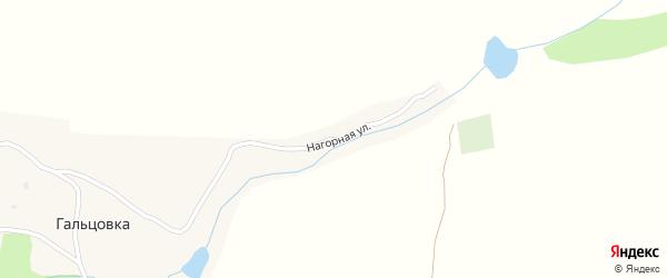 Нагорная улица на карте села Гальцовки с номерами домов