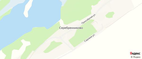 Карта села Серебренниково в Алтайском крае с улицами и номерами домов