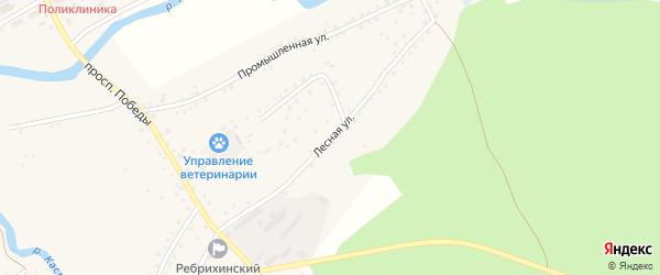 Лесная улица на карте села Ребрихи с номерами домов