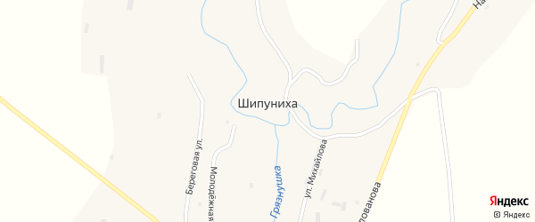 Береговая улица на карте села Шипунихи с номерами домов