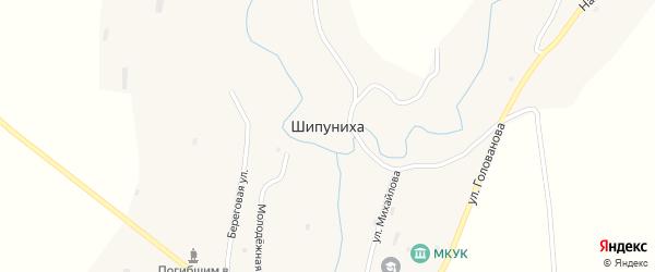 Улица Голованова на карте села Шипунихи с номерами домов