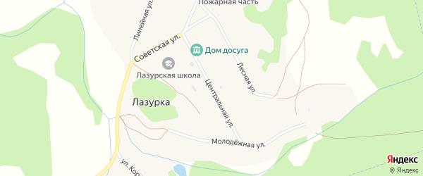 Центральная улица на карте села Лазурки с номерами домов