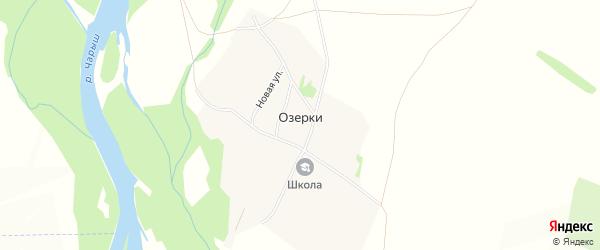 Карта поселка Озерки в Алтайском крае с улицами и номерами домов