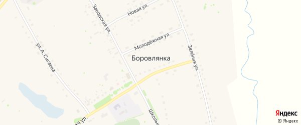 Улица Антона Сигаева на карте села Боровлянки с номерами домов