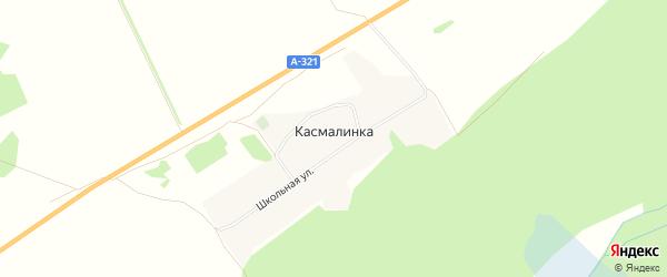 Карта села Касмалинки в Алтайском крае с улицами и номерами домов