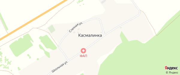 Школьная улица на карте села Касмалинки с номерами домов