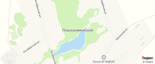 Октябрьская улица на карте Плоскосеминского поселка с номерами домов