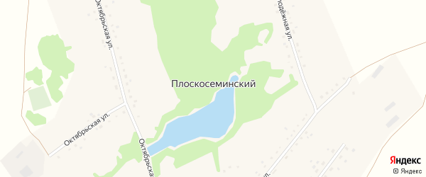Молодежная улица на карте Плоскосеминского поселка с номерами домов