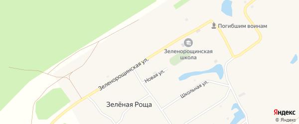 Томская улица на карте села Зеленой Рощи с номерами домов