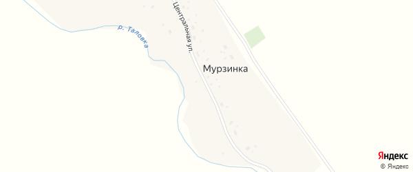 Центральная улица на карте поселка Мурзинки с номерами домов