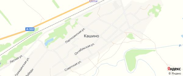 Карта села Кашино в Алтайском крае с улицами и номерами домов