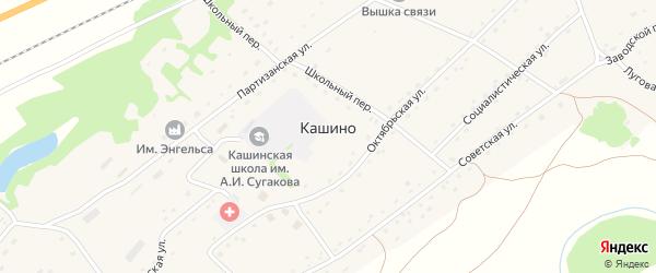 Зеленая улица на карте села Кашино с номерами домов