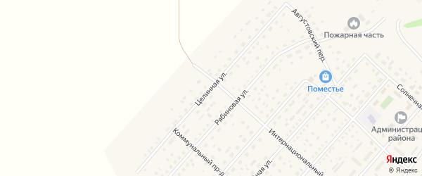 Целинная улица на карте села Шелаболихи с номерами домов