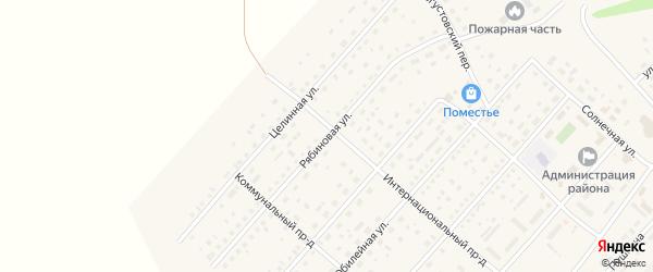 Рябиновая улица на карте села Шелаболихи с номерами домов