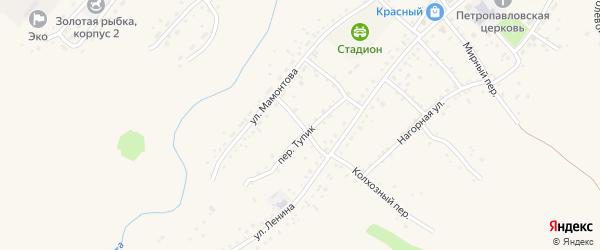Колхозный переулок на карте села Шелаболихи с номерами домов
