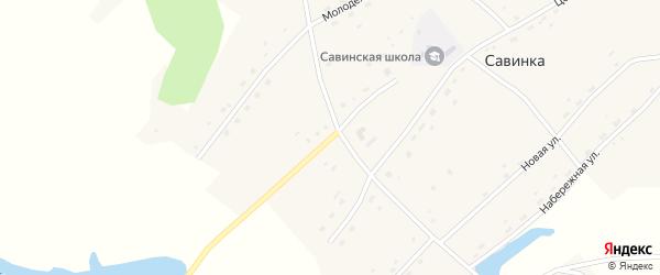Молодежная улица на карте села Савинки с номерами домов