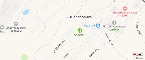 Улица Мамонтова на карте села Шелаболихи с номерами домов