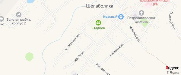 Октябрьский переулок на карте села Шелаболихи с номерами домов