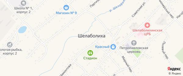 Майский переулок на карте села Шелаболихи с номерами домов