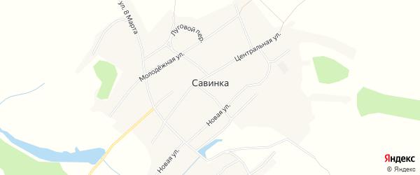 Карта села Савинки в Алтайском крае с улицами и номерами домов