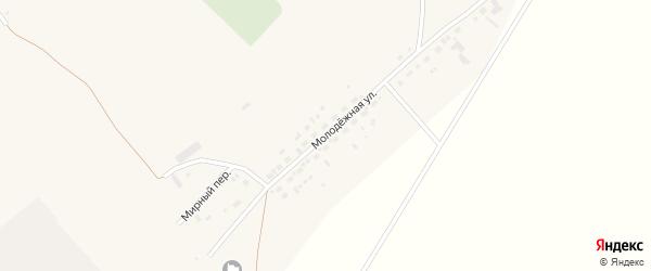 Молодежная улица на карте села Шелаболихи с номерами домов