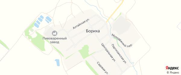 Карта поселка Борихи в Алтайском крае с улицами и номерами домов