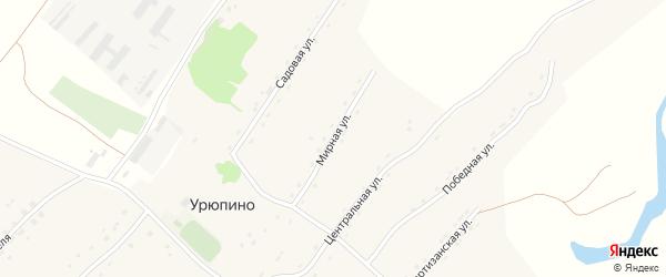 Мирная улица на карте села Урюпино с номерами домов
