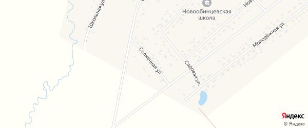 Солнечная улица на карте села Новообинцево с номерами домов