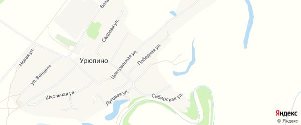 Карта села Урюпино в Алтайском крае с улицами и номерами домов