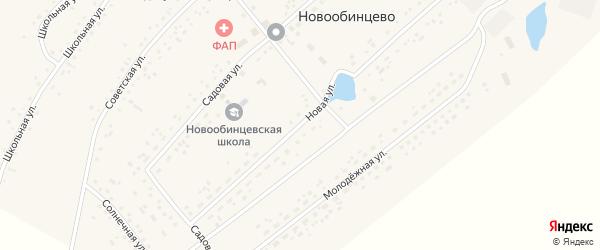 Новая улица на карте села Новообинцево с номерами домов