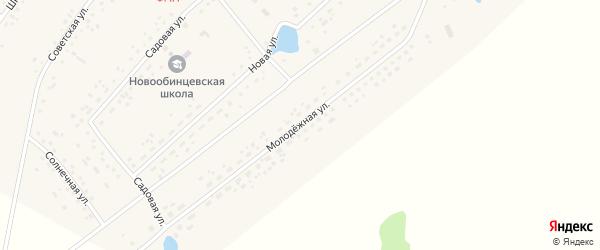 Молодежная улица на карте села Новообинцево с номерами домов