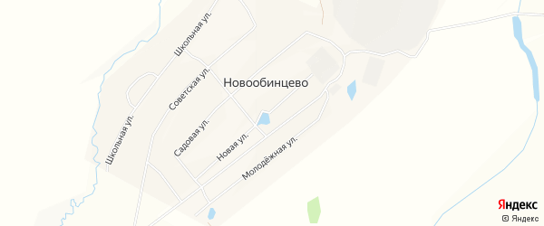 Карта села Новообинцево в Алтайском крае с улицами и номерами домов