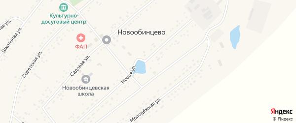 Школьная улица на карте села Новообинцево с номерами домов