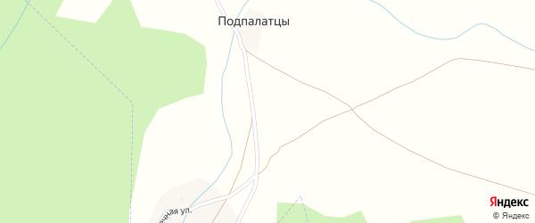 Лесная улица на карте поселка Подпалатцы с номерами домов