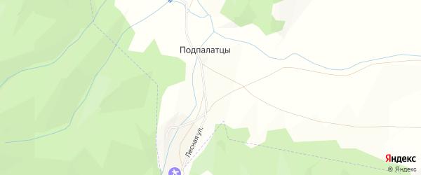 Карта поселка Подпалатцы в Алтайском крае с улицами и номерами домов