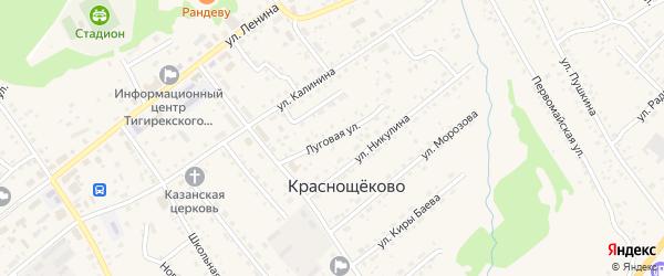 Луговая улица на карте села Краснощёково с номерами домов