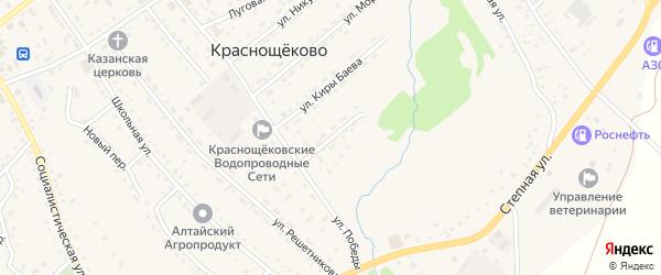 Цветочная улица на карте села Краснощёково с номерами домов