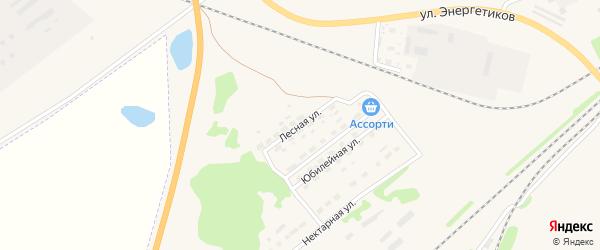 Лесная улица на карте Алейска с номерами домов
