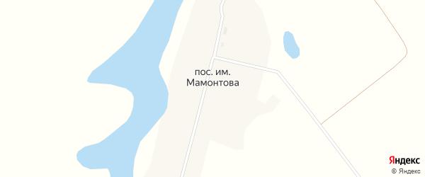 Центральная улица на карте поселка им Мамонтова с номерами домов
