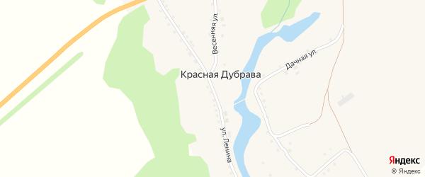Улица Ленина на карте поселка Красной Дубравы с номерами домов