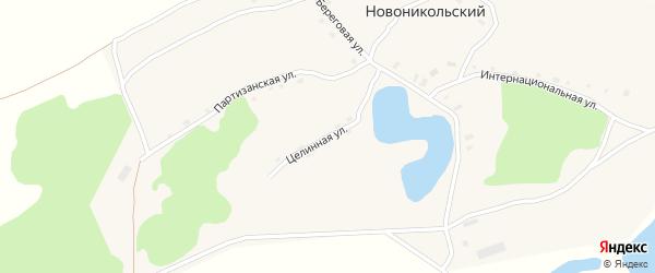 Целинная улица на карте Новоникольского поселка с номерами домов