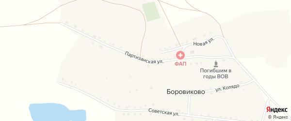 Партизанская улица на карте села Боровиково с номерами домов
