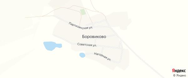 Карта села Боровиково в Алтайском крае с улицами и номерами домов