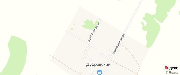 Молодежная улица на карте Дубровского поселка с номерами домов