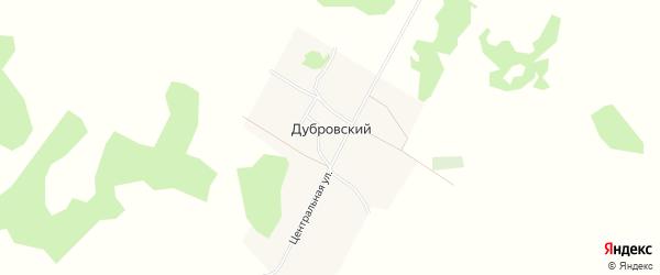 Карта Дубровского поселка в Алтайском крае с улицами и номерами домов
