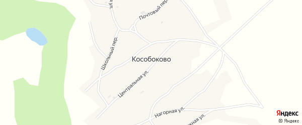 Подгорная улица на карте села Кособоково с номерами домов