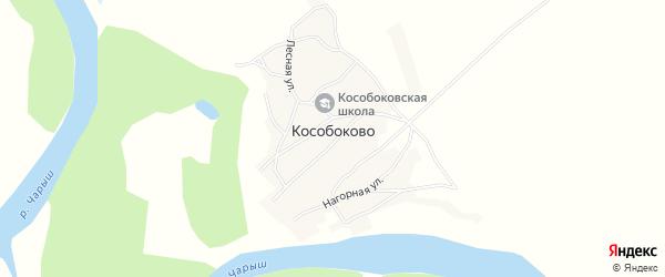 Карта села Кособоково в Алтайском крае с улицами и номерами домов