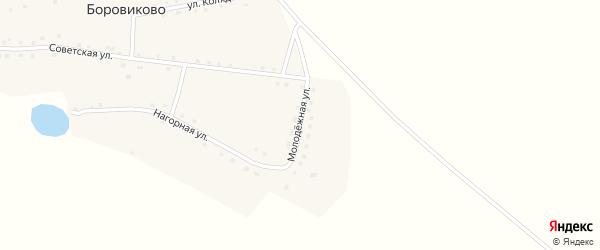 Молодежная улица на карте села Боровиково с номерами домов